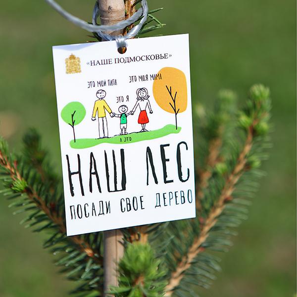 Вначале осени вПодмосковье пройдет акция «Наш лес. Посади свое дерево»