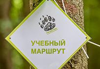 «ПандаПарк» откроют вОдинцовском парке культуры, спорта иотдыха