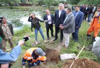 Глава Одинцовского округа Андрей Иванов провёл комиссионное обследование пруда вНемчиновке