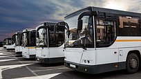 ВОдинцовском городском округе запустили 243 бесплатных автобуса допарка «Патриот»