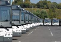 Бесплатные автобусы дляучастников акции «Наш лес» запустят вОдинцовском округе