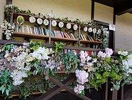 Еще 3пункта обмена книгами появятся впарках Одинцовского округа