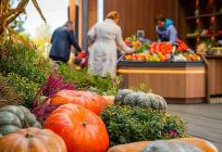 Нафестивале «Золотая осень» представлены производители Одинцовского округа