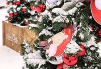 Впарке культуры, спорта иотдыха выходные пройдут поддевизом «Зимняя птица»