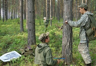 Натерритории Звенигородского лесничества завершено противопожарное обустройство лесов