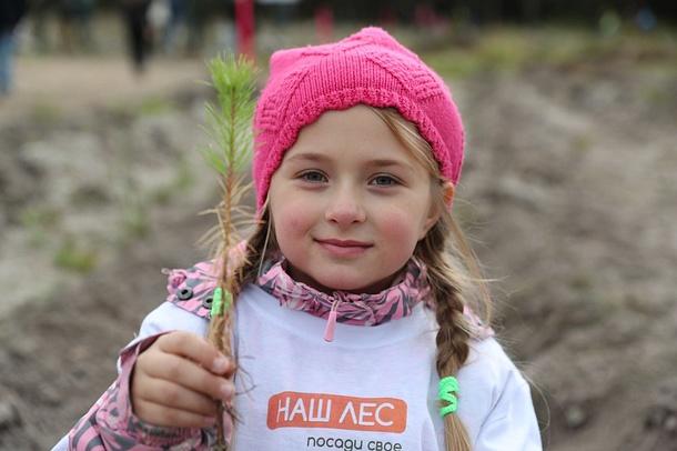 Свыше 26000 человек приняли участие вакции «Наш лес» вОдинцовском городском округе, Сентябрь