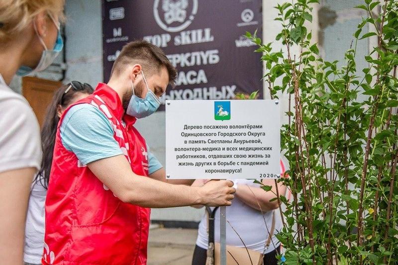 ВОдинцово высадили дерево впамять омедицинских работникам, отдавших жизни впериод пандемии