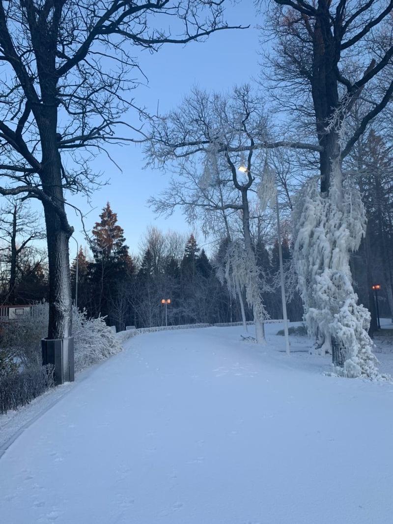 ЛРТ текст 2, ВОдинцовском парке культуры, спорта иотдыха протестировали систему искусственного оснежения
